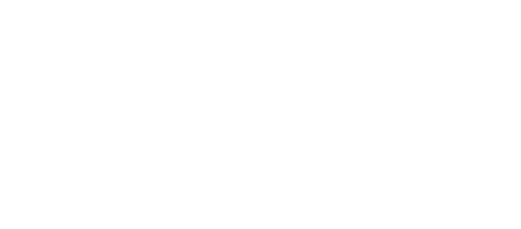 Advanced Insurance Consulting Logo White